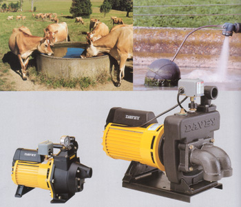 Naracoorte Lucindale Locality List  Image . This photo sponsored by Pumps - Domestic & Agriculture Category.